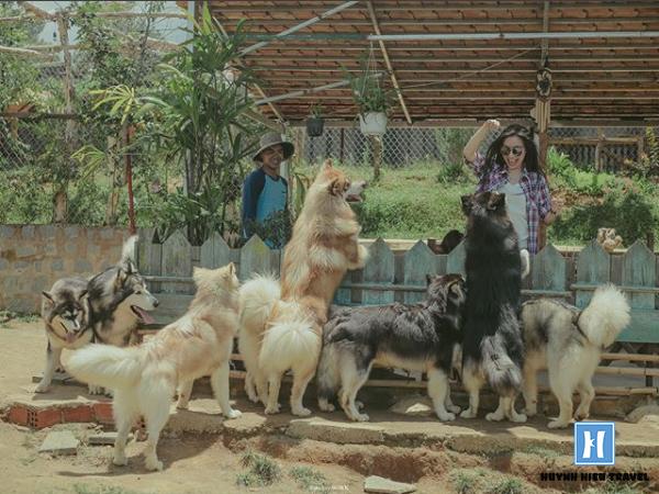 Nông trại thú cưng Đà Lạt
