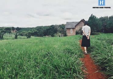 Căn nhà giữa cánh đồng Đà Lạt Milk Farm